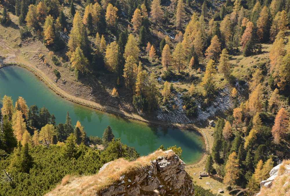 So schön bunt ist der Lärchenwald im Rofan nahe der Erfurter Hütte