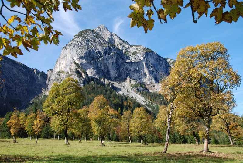 Das bekanntes Herbstbild: Großer Ahornboden im herbstlichen Farbenrausch