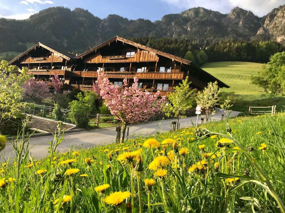 In Alpbach wandern und die Holzhäuser bewundern - ein ganzes Dorf wie eine Alm!