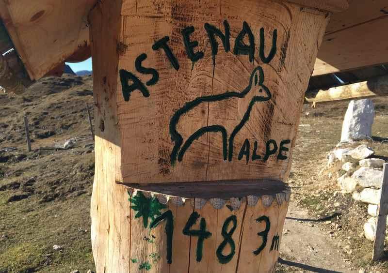Die Astenau Alpe auf 1483 Metern im Rofan, Tirol