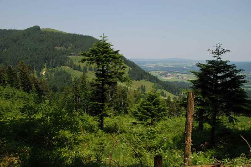 In Bad Tölz auf dem Blomberg die Aussicht über das Tölzer Land