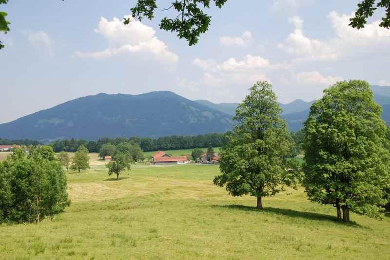 Rund um Bad Tölz wandern, am Blomberg, bei Lenggries und dem Brauneck