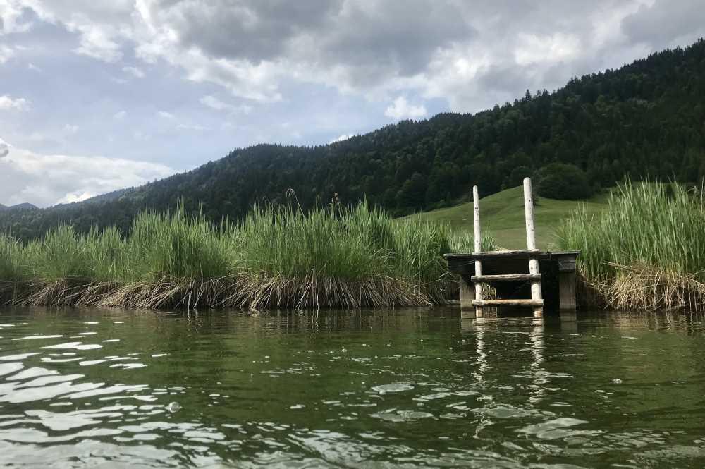 Das ist der urige Badesteg am offiziellen Seezugang in den Geroldsee