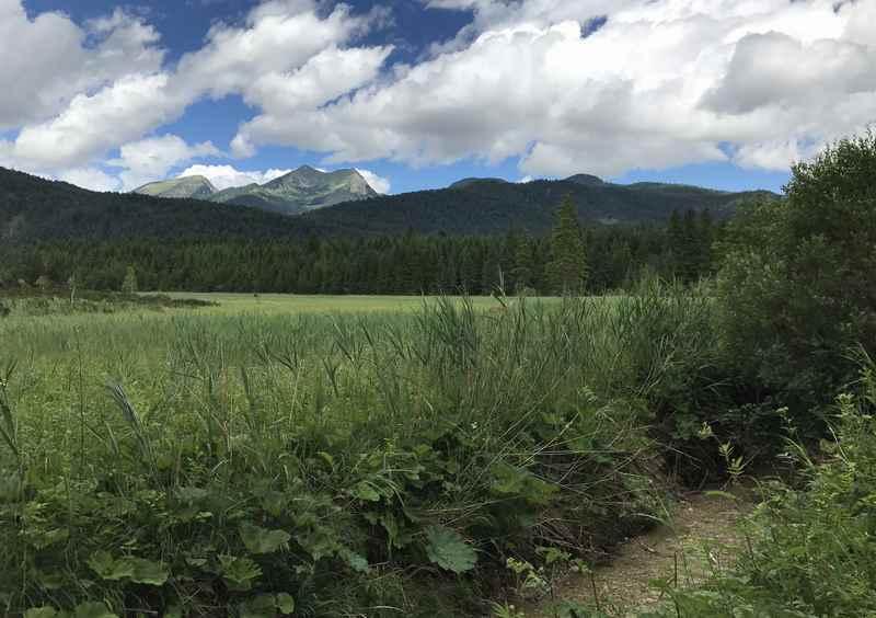 Am Moor entlang wandern und die Gipfel des Estergebirge sehen