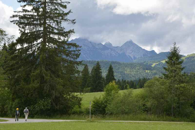 Auf einer Lichtung öffnet sich der Blick hinüber zum Wettersteingebirge