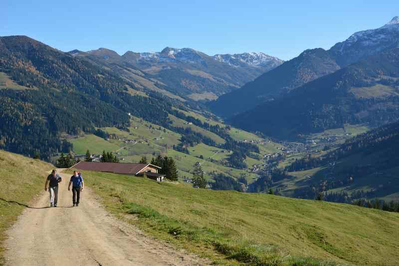 Zur Bischofer Alm wandern, leichte Wanderung in Alpbach