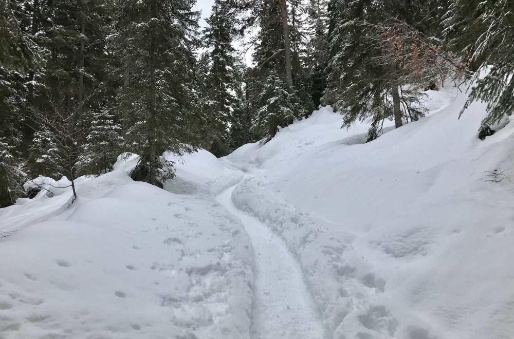 Schneewanderung Leutasch: Ein winterliches Bergabenteuer auf dem Brunschkopf