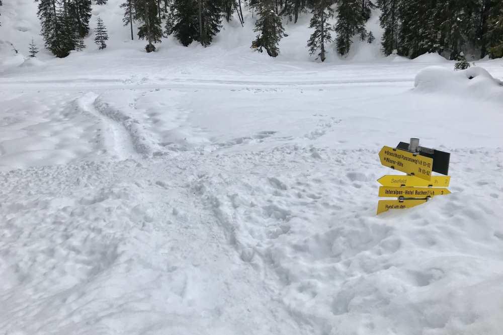 Wenn so viel Schnee liegt geht es über den hohen Schneestock und dann in den Spuren der Schneeschuhwanderer
