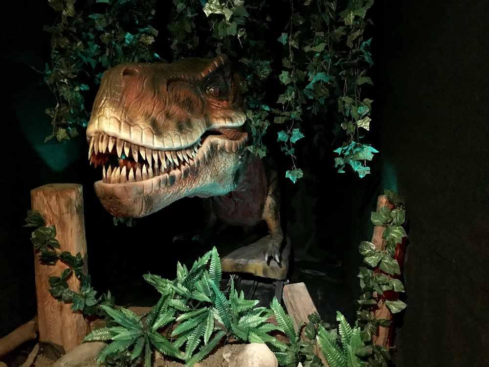 Der König der Dinosaurier begrüßt am Eingang in den Dinosaurierpark - im Dinoland Tirol