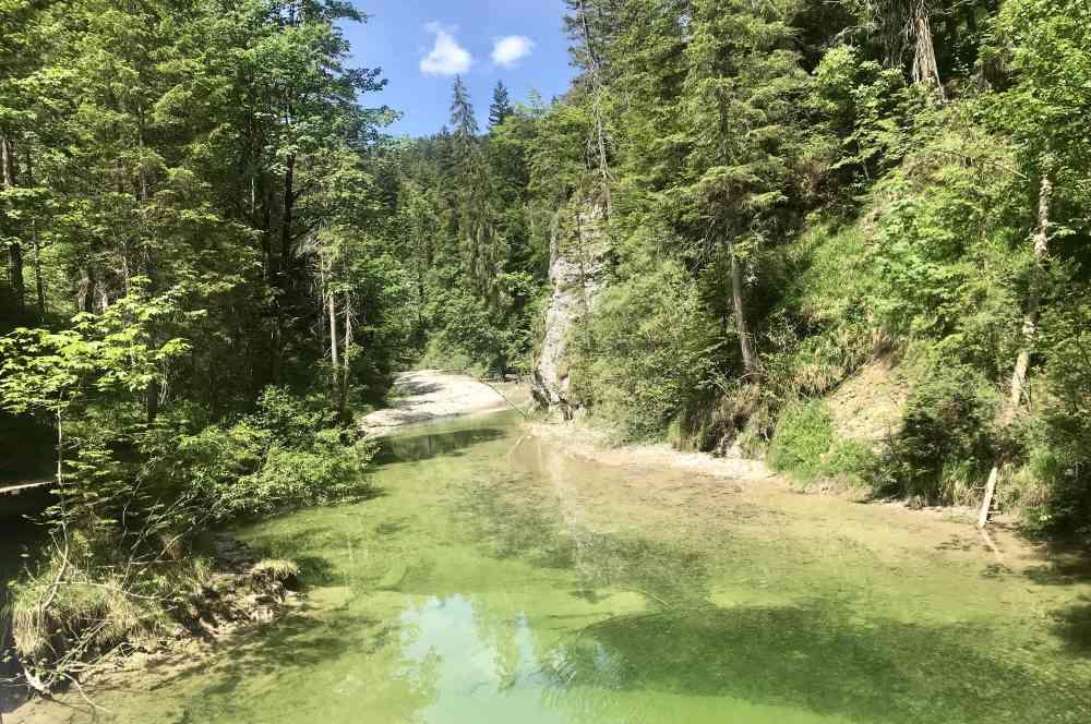 Glasklar fließt das Wasser durch die Finzbachklamm