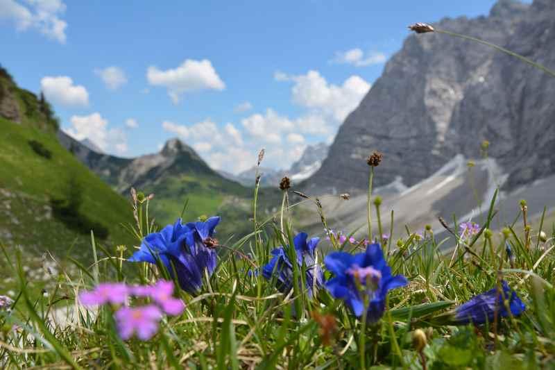 Vom Hohljoch auf die Falkenhütte wandern im Karwendelgebirge