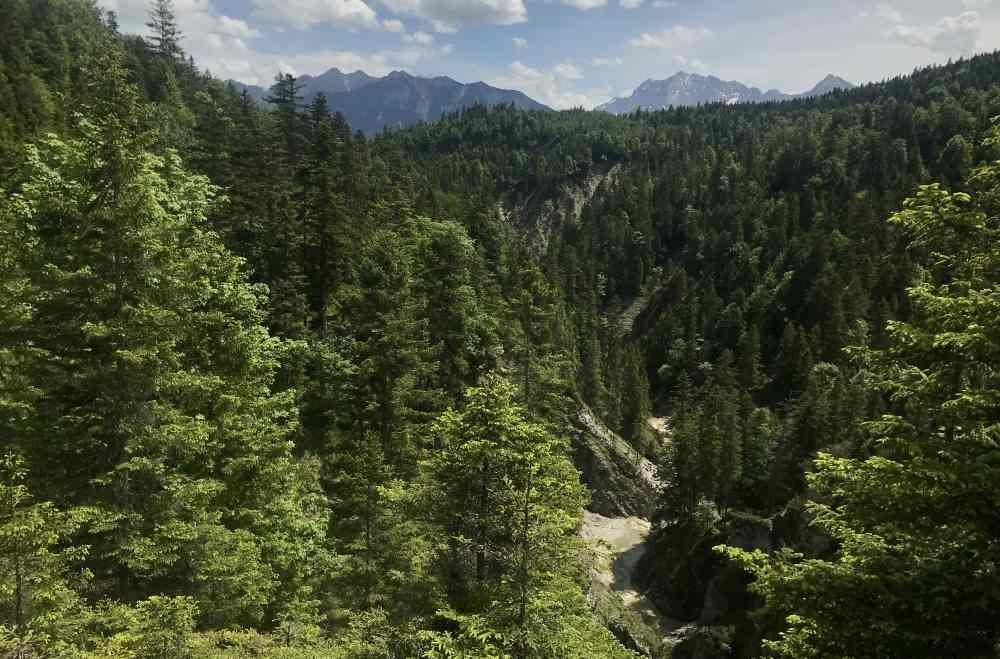 Der Blick bei der Anhöhe der Finzalm zu den Bergen und in die wilde Finzbachalm