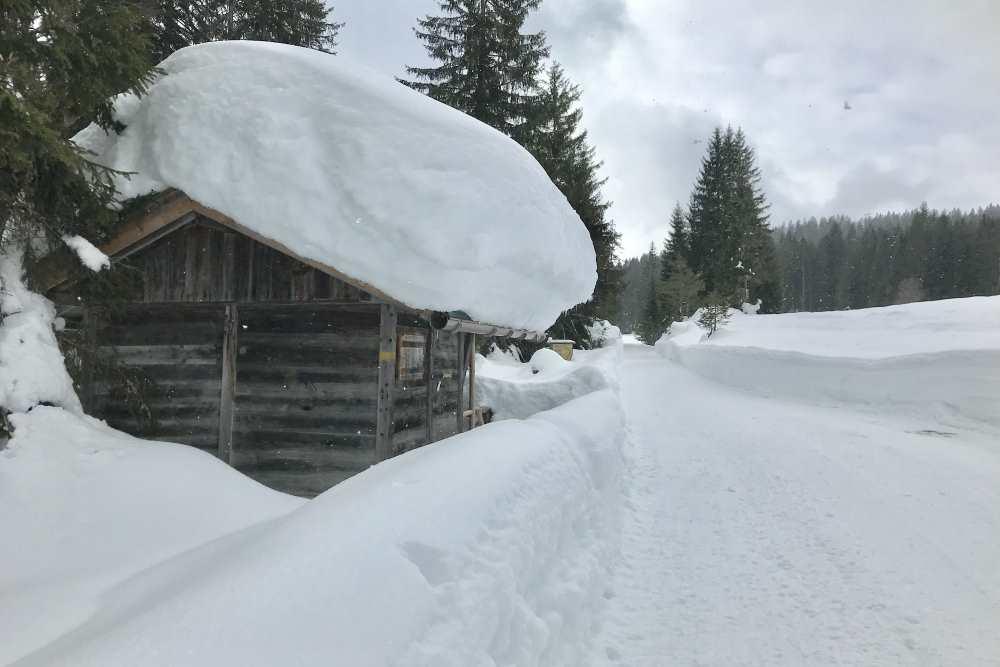 Schneewanderung Leutasch: Das ist die toll verschneite Hütte auf der Lichtung im Fludertal