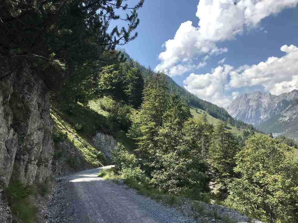 Auf dem breiten Forstweg kannst du auch gut zur Ganalm mit dem Kinderwagen wandern