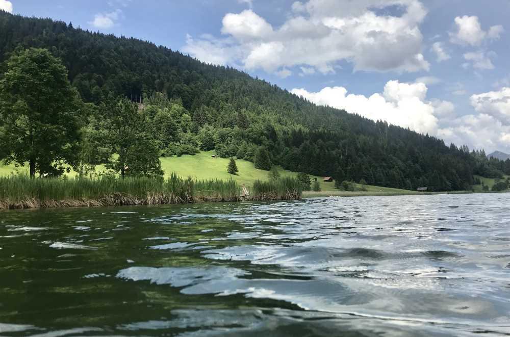 So schön ist das Wasser zum Baden und Schwimmen am Geroldsee