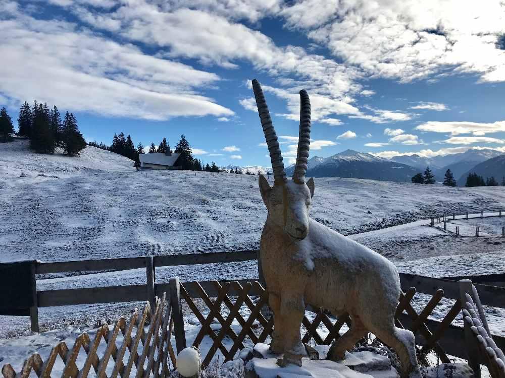Winter in Gnadenwald auf der Walderalm