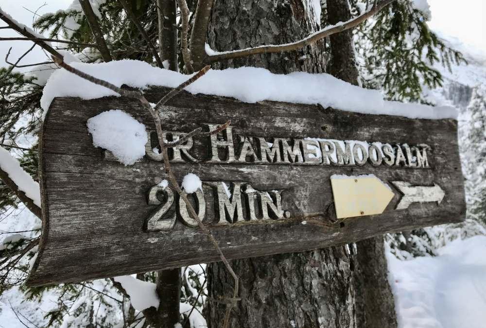Gaistal winterwandern: Es gibt eine gute Beschilderung zur Hämmermoosalm