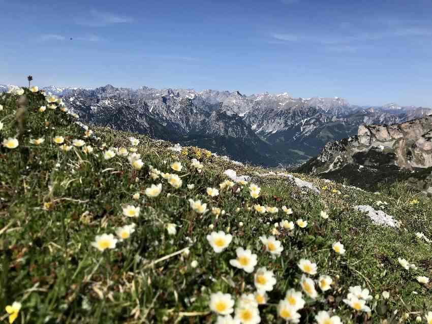 Gipfelblick von der Haidachstellwand auf das Karwendel