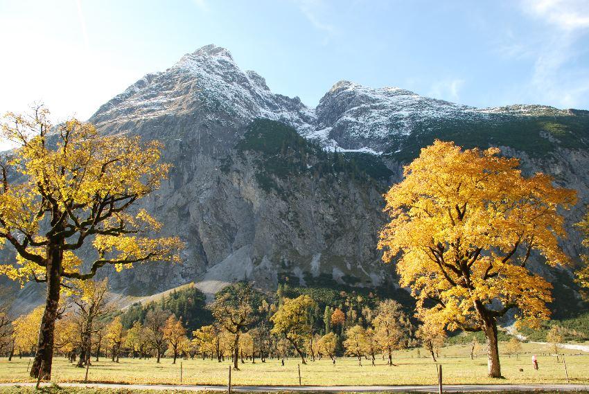 Herbsturlaub - Goldener Oktober am Ahornboden