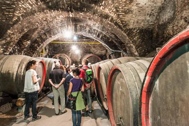 In den schönen historischen Weinkeller kommt man nur bei einer geführten Stadtführung, sonst ist abgesperrt