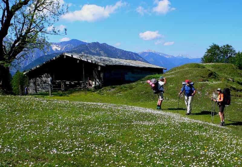 Vom Sylvensteinsee zur Hochalm wandern, Lenggries bei Bad Tölz