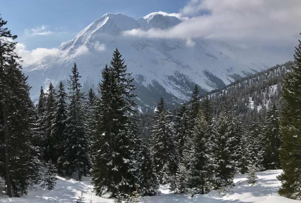 Schneewanderung Tirol: Nimm dir Zeit für diesen Blick auf die Hohe Munde