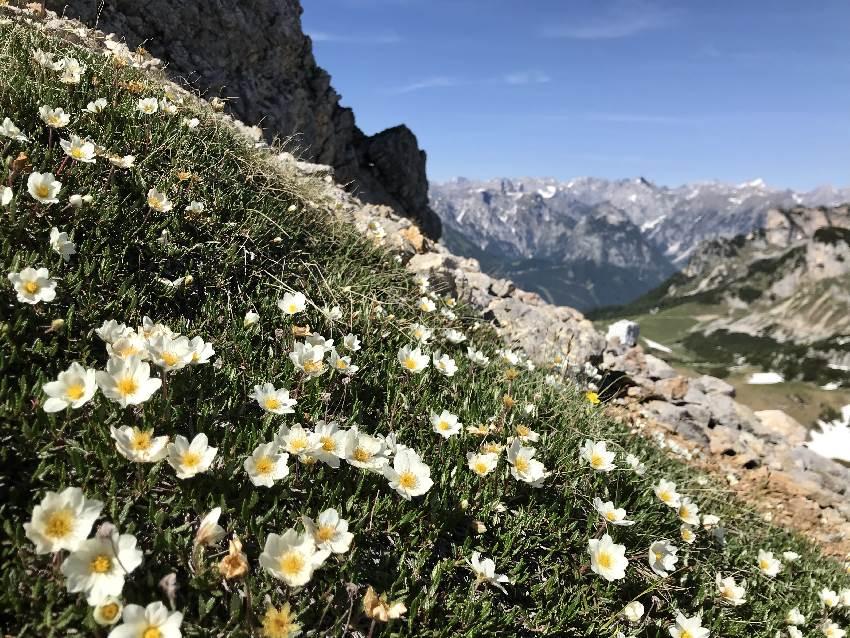 So weit bist du hier oben - diese Berge hast du bei deiner Wanderung!