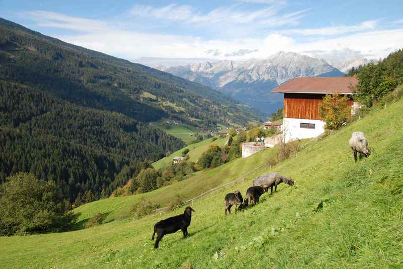 Der Ortsteil Innerst in Weerberg - Sommeridylle am Berg, hinten das Karwendel