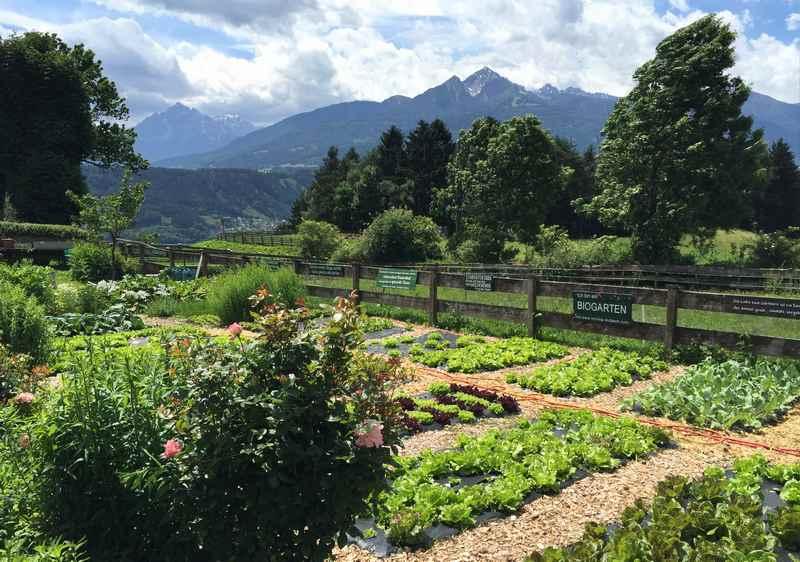 Von Innsbruck zum Gasthof Planötzenhof wandern - frische Zutaten aus dem Garten