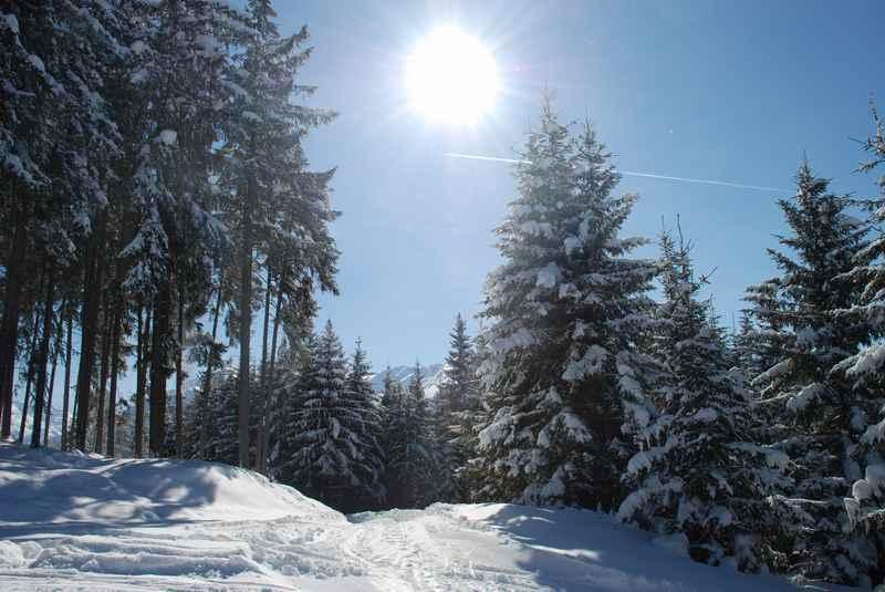 Innsbruck winterwandern - aus der Stadt durch den Winterwald zur Arzler Alm