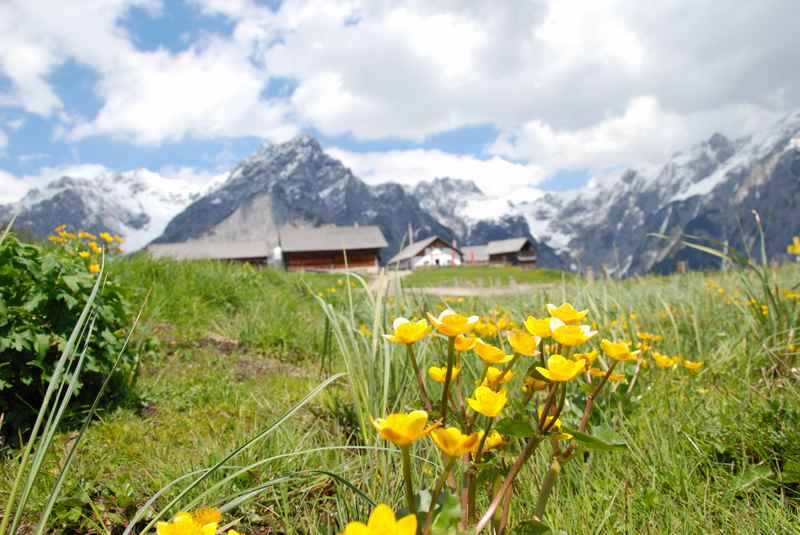 Juni Urlaub im Karwendelgebirge: Von Hütte zu Hütte wandern