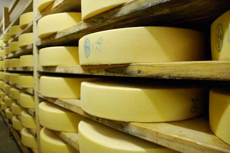 Im August füllt sich der Keller in der Käserei der Engalm im Karwendelgebirge