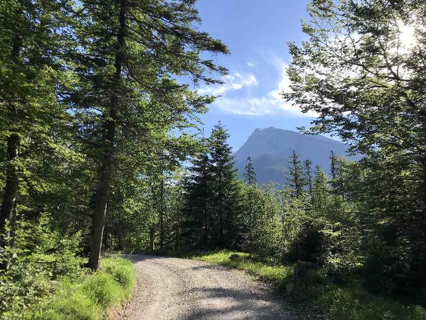 Anfangs ist die Karwendelhaus Wanderung teilweise im Schatten