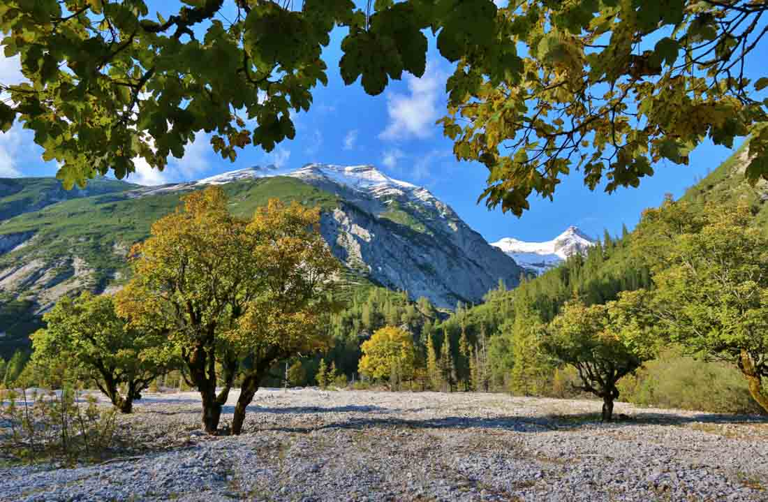 Hier ein Bild von Franz Zeiler: So sieht das Hinterautal im Herbst aus.