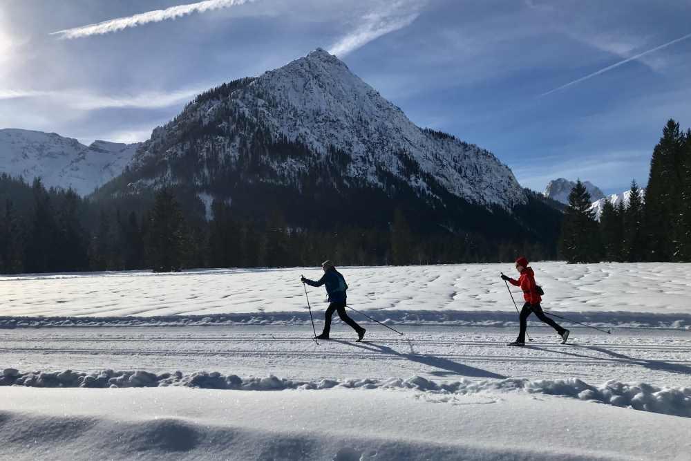 Langlaufen mit Hund am Achensee
