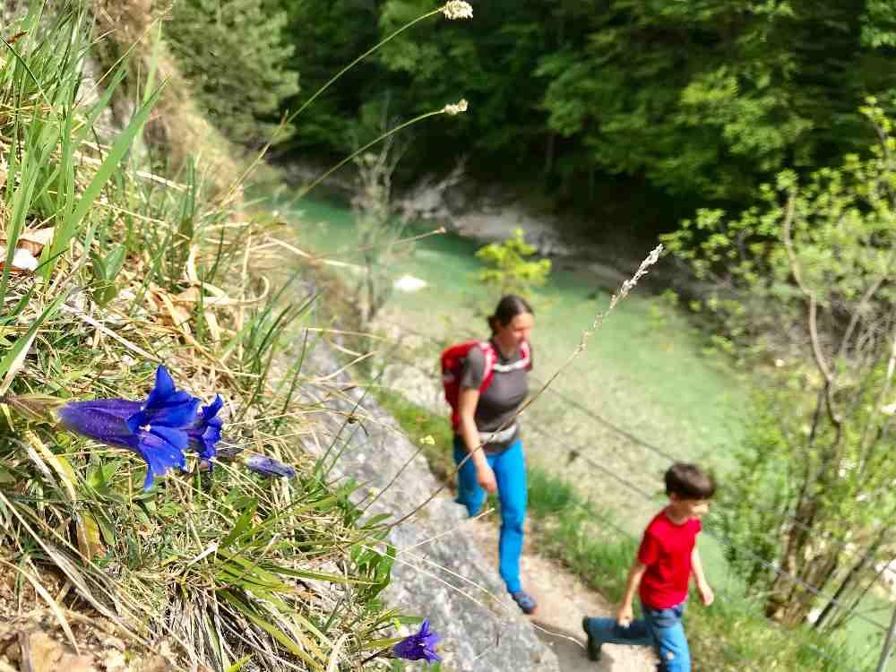 Unterwegs in der Karwendelregion mit Kindern - es gibt viel zu tun!