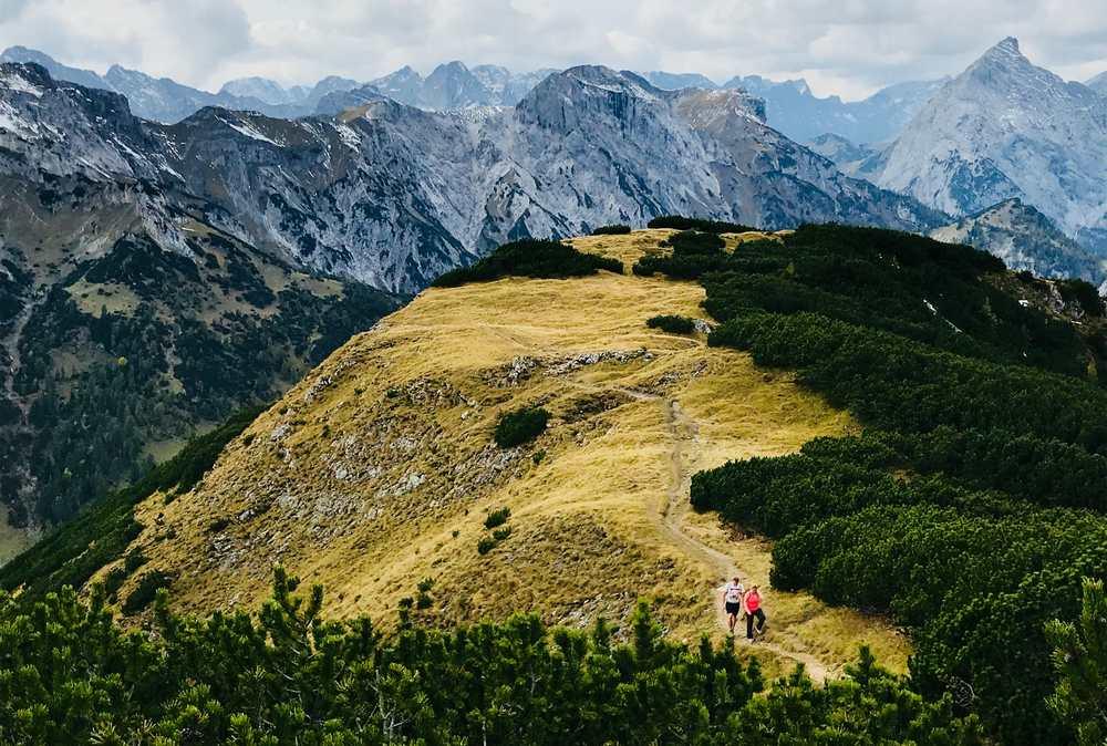 Bärenkopf Achensee: Herbstlich gefärbte Almwiese am Gipfel