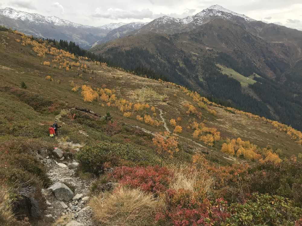 Im Herbst am Kellerjoch wandern in der bunten Landschaft der Tuxer Alpen