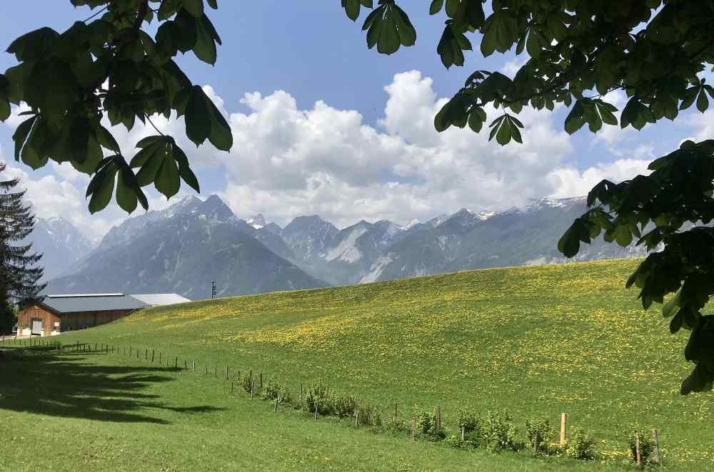 Von der Terrasse der Koglmoosalm kannst du auf das Karwendel hinüberschauen