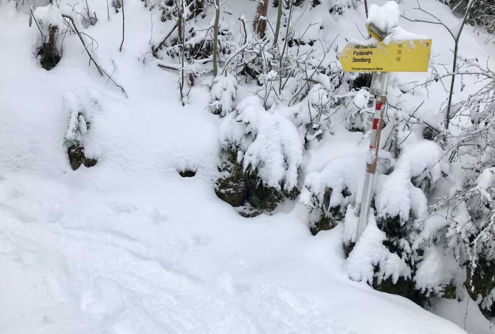 .. hier geht es links weg von der Spieljochbahn Skipiste, auf dem Sommerwanderweg in den Wald hinein