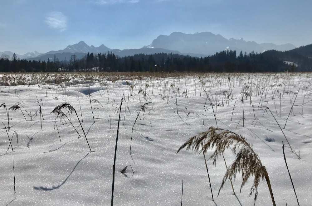Das Moos am Barmsee im Winter mit dem Wettersteingebirge