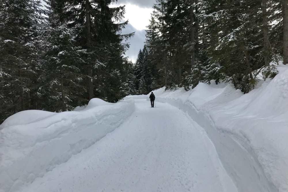 Schneewanderung Leutasch: Heute geht die Winterwanderung durch das verschneite Fludertal