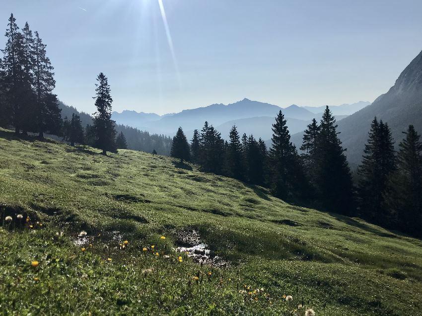 Die schönen Almen im Gaistal - mit Blick auf´s Karwendel