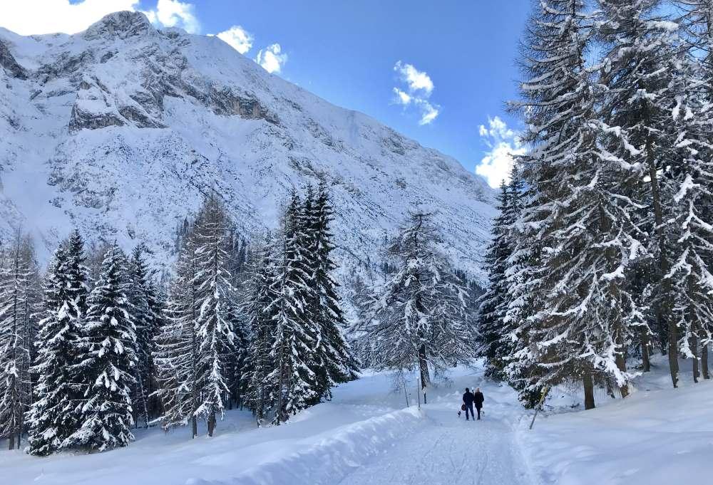 Zur Hämmermoosalm winterwandern - traumhaft bei Neuschnee im Gaistal