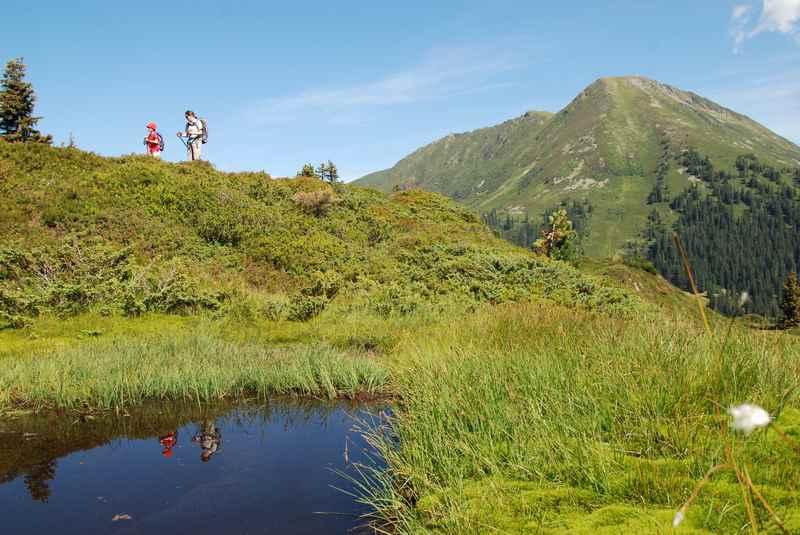 Im Sommer auf der Mautstrasse Loas zum Loassattel und dort toll wandern in den Tuxer Alpen