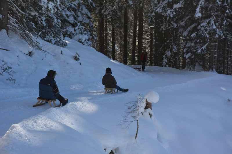 In Mittenwald rodeln - diese Rodelbahnen lohnen sich zum Schlittenfahren in Mittenwald, Krün und Wallgau