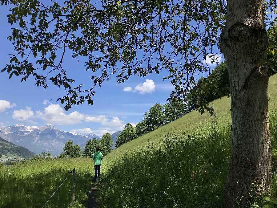 Naturerlebnisweg Zillertal - vom Wasserfall geht es über die Wiesen