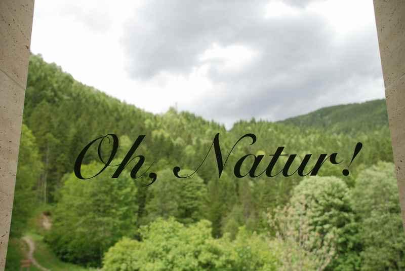 Lasst und die Natur schützen!