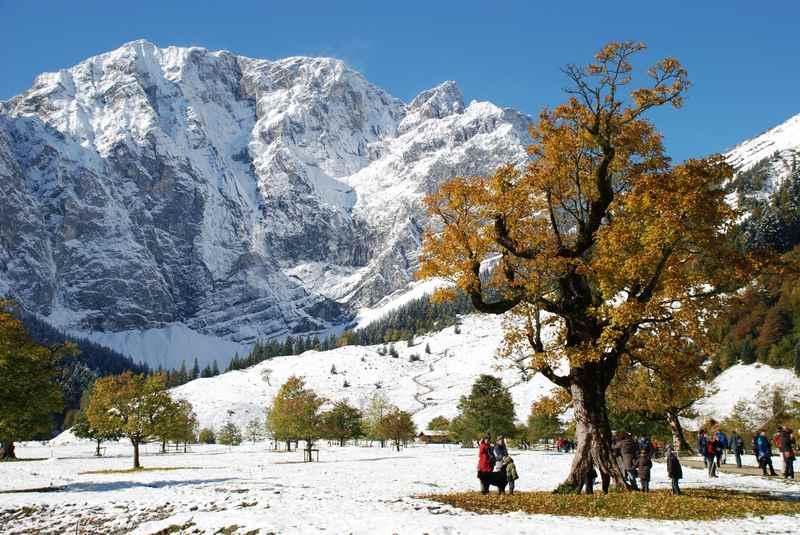 Im Oktober trifft der erste Schnee auf die bunte Blattfärbung am Ahornboden im Karwendel