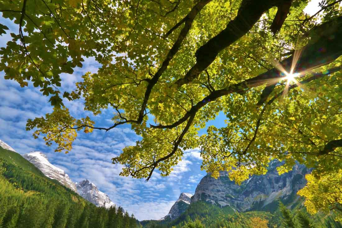 So liebe ich den Oktober Urlaub im Karwendel: Bunt gefärbte Blätter in alpiner Kulisse, fotografiert von Franz Zeiler